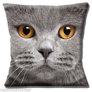 "Grey Cat 16""x16"" 40cm Cushion Cover British Shorthair with Amber Eyes Photo"