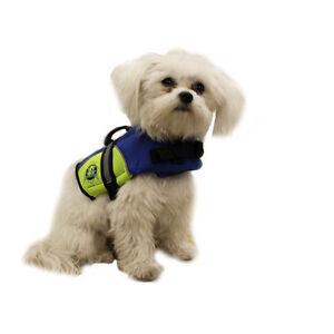 Blue/Yellow Neoprene Doggy Life Jacket