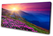 Landscapes Ukraine rhododendron  SINGLE DOEK WALL ART foto afdrukken
