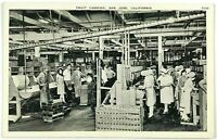 Fruit Canning Factory Inside San Jose California Black & White Vintage Postcard