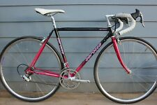Vintage Serotta Road Bike 49cm w/Campagnolo Group and Wheels, 1990s Paint