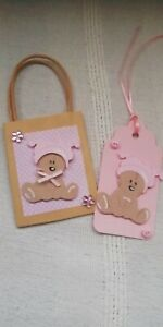 Cute Baby Girl Teddy bear Gift Bag And Gift Tag