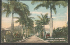 unmailed post card Palm Avenue Port Antonio/A Duperly & Son Kingston Jamaica