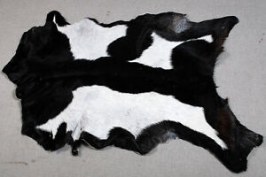 "New Goat hide Rug Hair on Area Rug Size 34""x24"" Animal Leather Goat Skin U-5655"