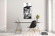 Wandtattoo Wandsticker Aufkleber Katze V9 Grösse: 60 x 120 cm