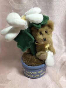 "Boyds Bear ""Potsie Daisydew"" Plush Bear In Daisy Pot - He Loves Me Not"