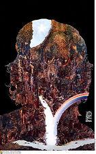 Political cuban POSTER.Che Guevara Rainbow Falls Cuba.1.Revolution Art Design