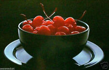 Cherries by Rod Caudle
