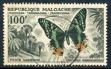 STAMP / TIMBRE DE MADAGASCAR N°81 OBLITERE PAPILLON