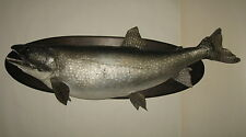 "Vintage 33"" Taxidermied Lake Trout Real Skin Mount Fish Taxidermy in Belfast Me"
