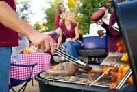 BARBECUE Website Earn $2,391 A SALE FREE Domain Hosting Traffic