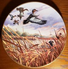 Green-Winged Teal in Jan, Ken Michaelson, Sporting Yr Coll Plate, Franklin Mint