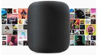 Apple HomePod Black  Home Pod Mac Sound smart device IOT