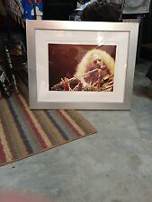Jethro Tull Photograph Giclee Numbered Limited Edition James Fortune Print Art