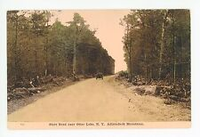 """State Road near Otter Lake"" Antique ADIRONDACKS Dirt Road Car 1910s"