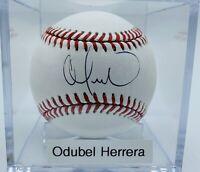Phillies Odubel Herrera Autograph On OML Baseball. MLB Authenticated. UV Case.