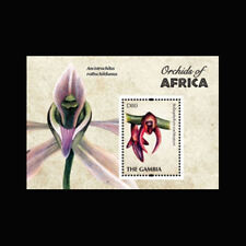 Gambia, Sc #3402, MNH, 2011, S/S, Orchids, Flora, Flowers, FL252