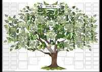 Tree of Life 7 Generation Family Tree Sticker Chart
