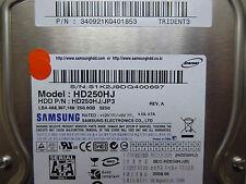250 GB Samsung hd250hj/340921kq401853/2008.04/bf41-00180a rev.07, funda rígida Disc