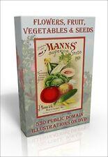 Flowers, Fruit, Veg & Seeds - 530 public domain images DVD inc Temple of Flora