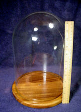 "12"" TALL Large DOME Glass DISPLAY Case HARDWOOD Wood Base DOLL Ornament BELL JAR"