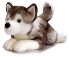 Husky Perro, tormenta Peluche Juguete Suave de Peluche De Husky, 35 Cm por Keel Toys