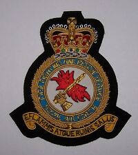 UK Britain RAF Fire Rescue Service Unit Uniform Air Force Squadron Force Patch