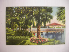 VINTAGE LINEN POSTCARD A SHADY WALK AROUND A COUNTRY HOME TAMPA FLORIDA 1941