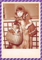 Carte Postale Chien