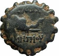 DEMETRIOS I Soter RARE R3 Ancient Seleukid Greek Coin HORSE ELEPHANT i75711