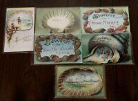 Lot of 6 Vintage Souvenir Shells Seashells Postcards~Early 1900's-a439