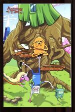 ADVENTURE TIME #23 NEAR MINT BRYAN TURNER VIRGIN VARIANT COVER D