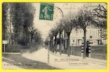 cpa RARE 94 - BRY sur MARNE (Val de Marne) L' Avenue de RIGNY
