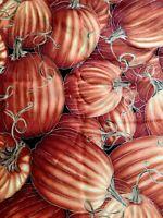 Pumpkin Fabric BTY Timeless Treasures, CM6443, Harvest, JOL Cotton Fabric