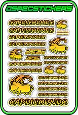 CAPRICORN RC STICKER A5 LAB 1/8 F1 1/10 TESLA ELECTRIC NITRO CAR HARD YEL ORA B