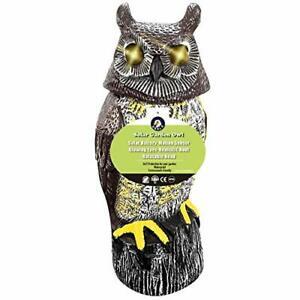 Owl set ornament vintage owl gift ceramic owl figurine owl decor for him owl statue owl stand bird decoration owl pottery ornament brown owl