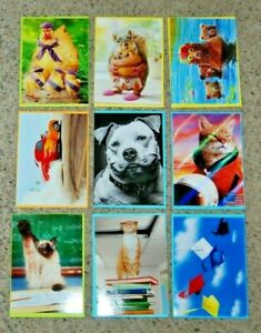 Lot 9 NEW Avanti Mothers Fathers Day Graduation Animal Greeting Cards Envelopes