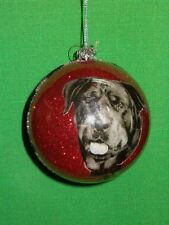 Rottweiler Queen Dog Photo Ball Ornament by Katherines Collection Retired Line