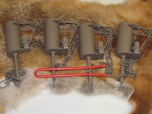 DP setter tool + 4 Powder Coated Duke DP Dog Proof Coon Traps Trapping Raccoon