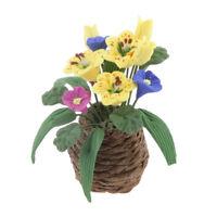 Miniature Flower Plant in Basket Dollhouse Fairy Garden Decor Accessory 6#
