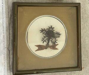 Victorian Mourning Hair Art Shadowbox Frame Velvet w/ Child Tintype Photograph
