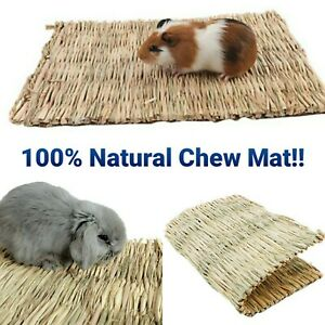 Animal Hamster Grass Straw Chew Mat Breakers Toy Pet Rabbit Guinea Bed NATURAL