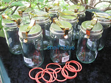 SET OF TEN  COMPLETE Fowlers Vacola  Preserving  #20 JAR STANDARD LID CLIP RING