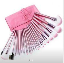 Pink Color Makeup 22Brushes Set