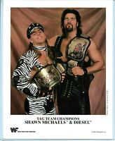 WWE SHAWN MICHAELS AND DIESEL P-233 OFFICIAL LICENSED AUTHENTIC 8X10 PROMO PHOTO
