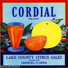Leesburg Lake County Florida Cordial Orange Citrus Fruit Crate Label Art Print