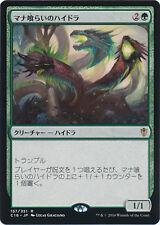 ***4x JAPANESE Managorger Hydra*** Commander 2016 Mint MTG Magic Cards