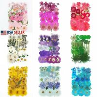 36-39pcs Real Pressed Dried Flowers Floral For DIY Epoxy Resin Candle Arts Craft