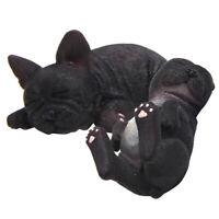 Vivid Arts Bichon Frise Puppy Pet Pal intérieur//extérieur décoration de jardin Coffret G