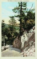 California CA Vintage Postcard The Road At Mount Wilson 1920's White Border